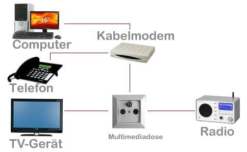 ebook Molecular mechanisms of